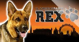 Rex - Φρουτάκια 2