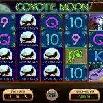 Coyote Moon Φρουτάκι