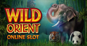 Wild-Orient-Microgaming-Slot-22