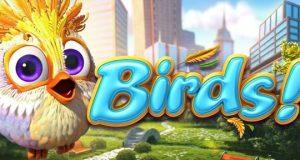 birds_slot